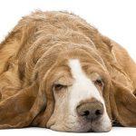 4 astuces pour vous aider à gérer le risque anesthésique