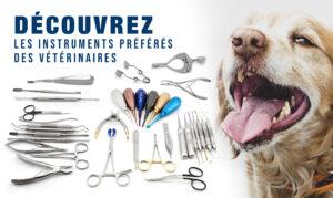 Instruments de dentisterie vétérinaire - Guide d'achat 2021