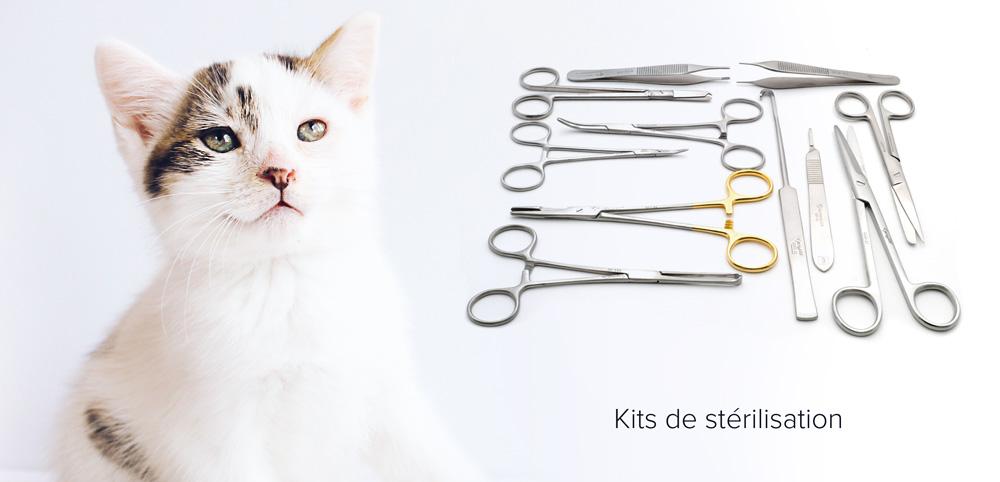 Instruments de stérilisation vétérinaire - Guide d'achat 2021